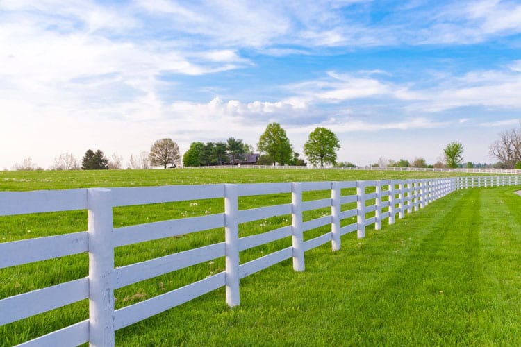 green field with white fences